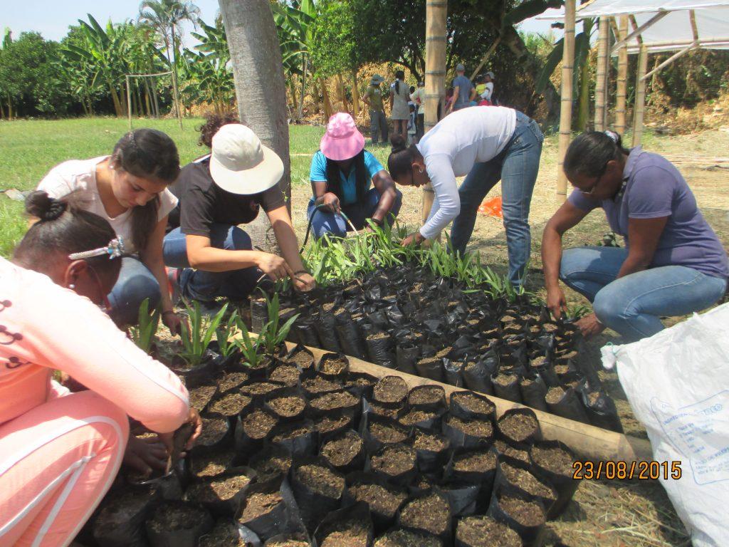 2016-062 Minga 23-Ago-2015 Perico Negro, Cauca (22)